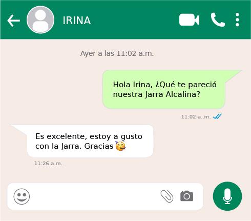 6 IRINA-TS